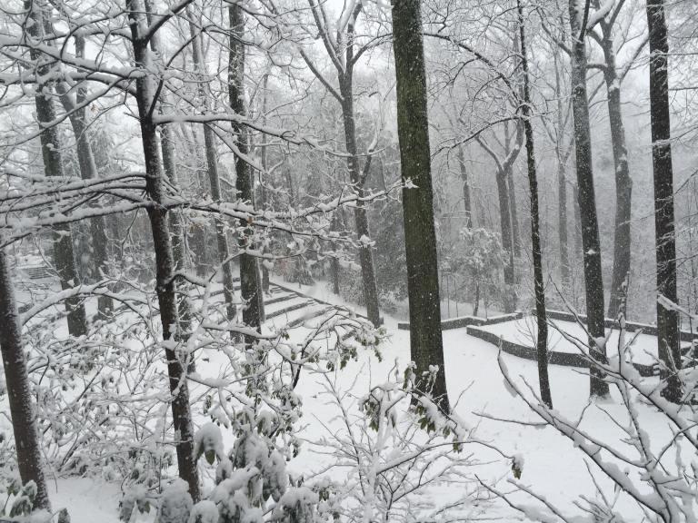 Scott's Amphitheater under snow