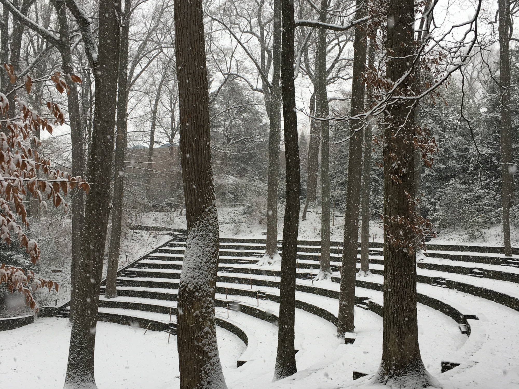 Snow in the amphitheater